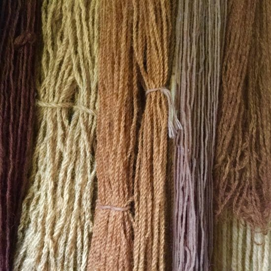 lungwort dyed yarn